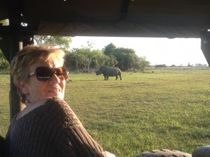 a rare sight in Botswana - Rhino at Chiefs Camp