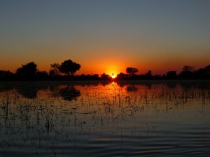 Pelo Camp in the Okavango Delta