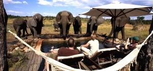 Elephants Playground - Somalisa Camp