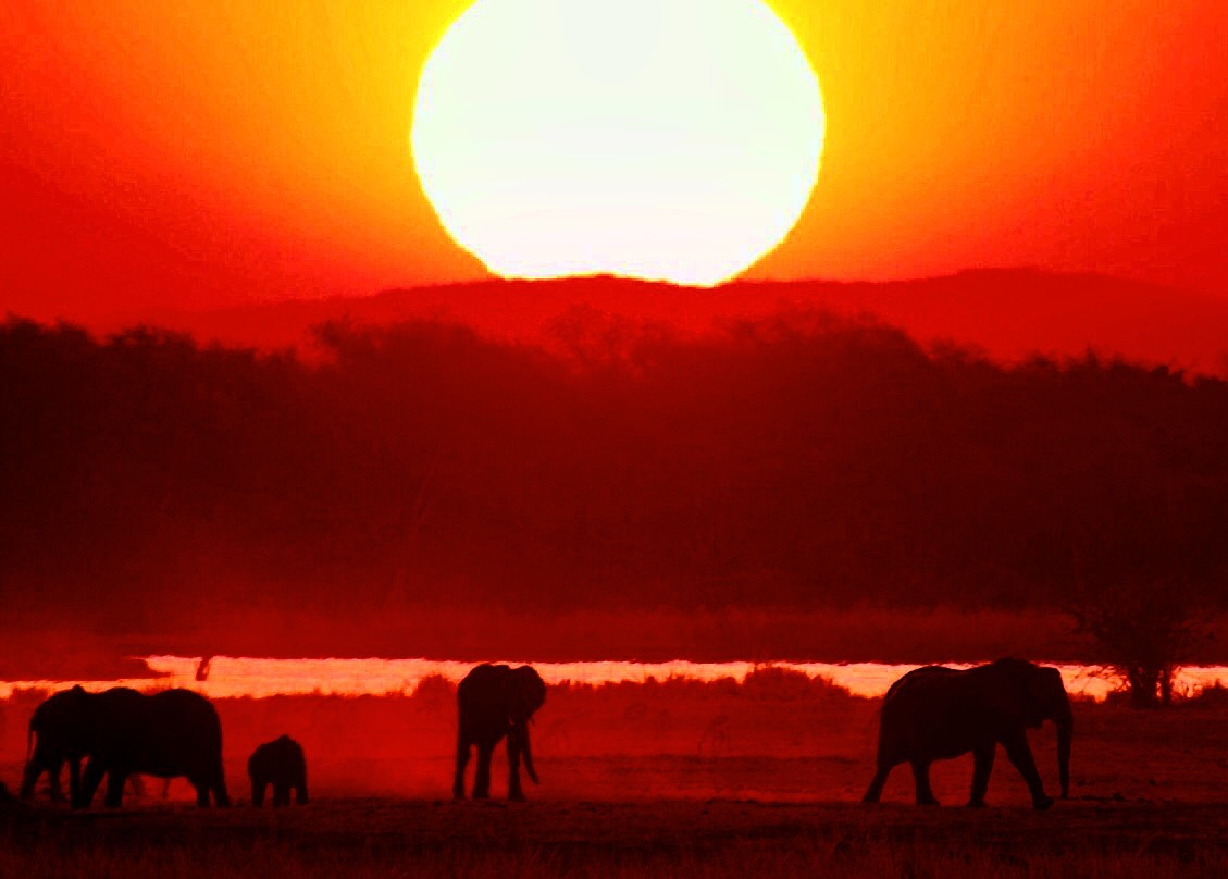 A Standard Mana Pools sunset